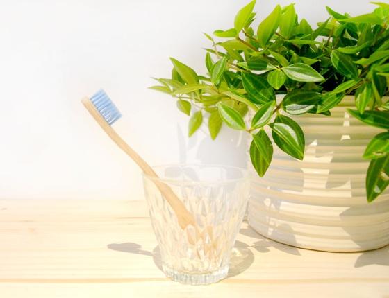 Brosse à dent en bambou enfant - poils souples bleus