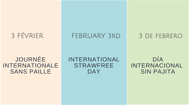 Journée internationale sans paille !