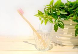 Brosse à dent en bambou adulte - poils souples roses