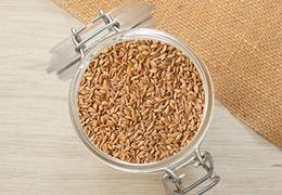 Petit épeautre en grains bio