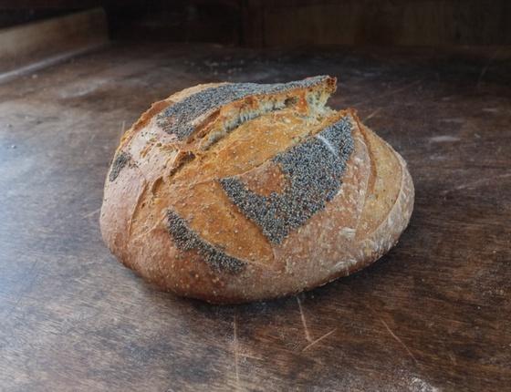 Pain aux graines de pavot 500g bio & local