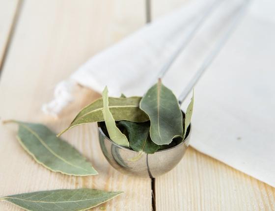 Ravinstara bio en feuilles