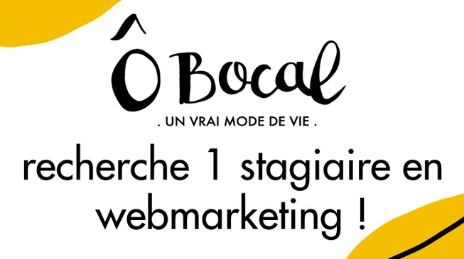 Offre de stage en webmarketing