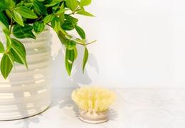 Recharge brosse à vaisselle en fibre