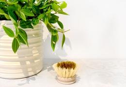 Recharge brosse vaisselle fibre et laiton