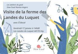 SlÔw Atelier #21 : visite de la ferme des Landes du Luquet