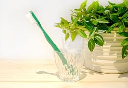 Brosse à dent à tête rechargeable sapin - poils médium