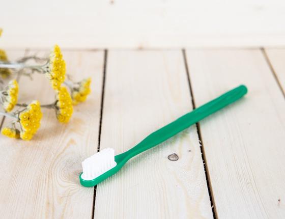 Brosse à dent à tête rechargeable sapin - poils souples