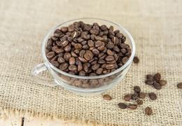 Café décaféiné d'Ethiopie bio