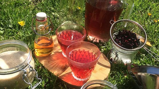 Cocktail bio et bon rhum hibiscus