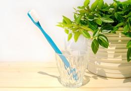 Brosse à dent à tête rechargeable bleue - poils souples