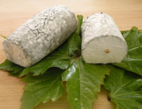 Fromage de chèvre Sainte-Maure bio