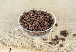 Café d'Inde Bababudan en grains