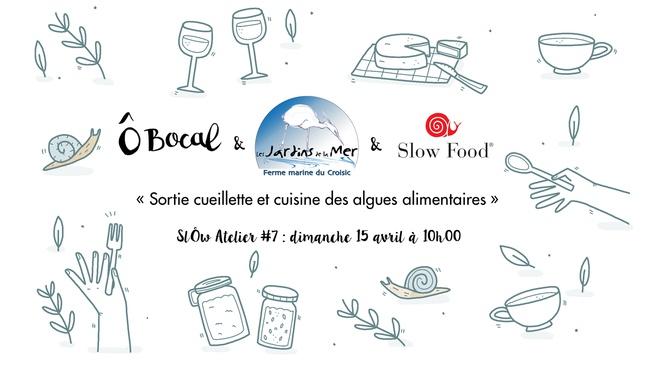 SlÔw Atelier #7 : Sortie cueillette et cuisine des algues