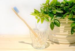 Brosse à dent en bambou adulte - poils souples bleus