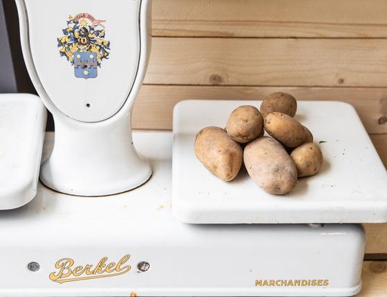 Pommes de terre bio & locales
